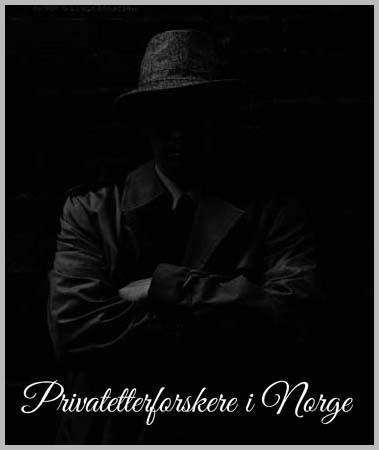 Detektiv Tjenester